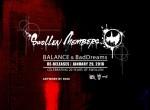 SWOLLEN_MEMBERS_BALANCE_BAD_DREAMS_3